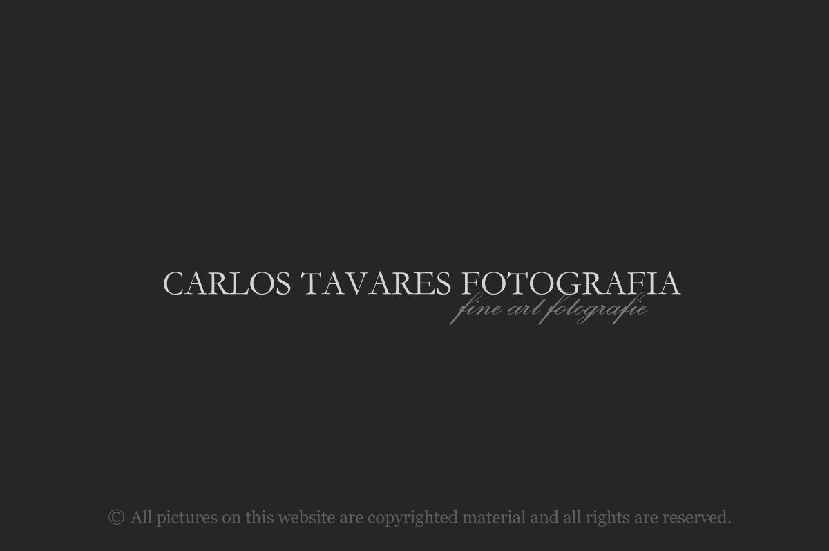 CARLOS TAVARES FOTOGRAFIA_1